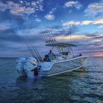 подвесной открытый катер / двухмоторный / для спортивной рыбалки / Т-образная верхняя часть