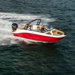 небольшой катер c подвесным мотором / боурайдер / для спортивной рыбалки / макс. 13 человек