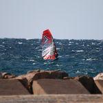 Парус для виндсерфинга для гонок / слалом / 8 планок REFLEX_8 Severne Sails