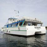 пассажирское судно / катамаран / с внутренним мотором / из алюминия