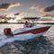 подвесной открытый катер / для спортивной рыбалки / макс. 8 человек / Т-образная верхняя часть222 FISHERMANWellcraft