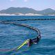 заграждение против загрязнений / надувное / открытое море