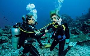 Дайвинг, Подводная охота