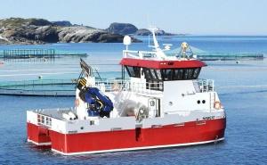 Катера, судна и морское оборудование