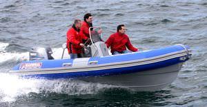 профессиональный катер профессиональное рыболовное судно / катер для дайвинга / c подвесным мотором / надувная лодка с полужестким корпусом