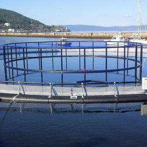 клетка для рыбы для аквакультуры
