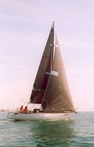 грот / для гоночной яхты / три-радиальный покрой