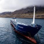 специальное судно баржа / фидер