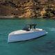 быстроходный катер с внутренним мотором / дизельный / двухмоторный / корпус водоизмещающего типа